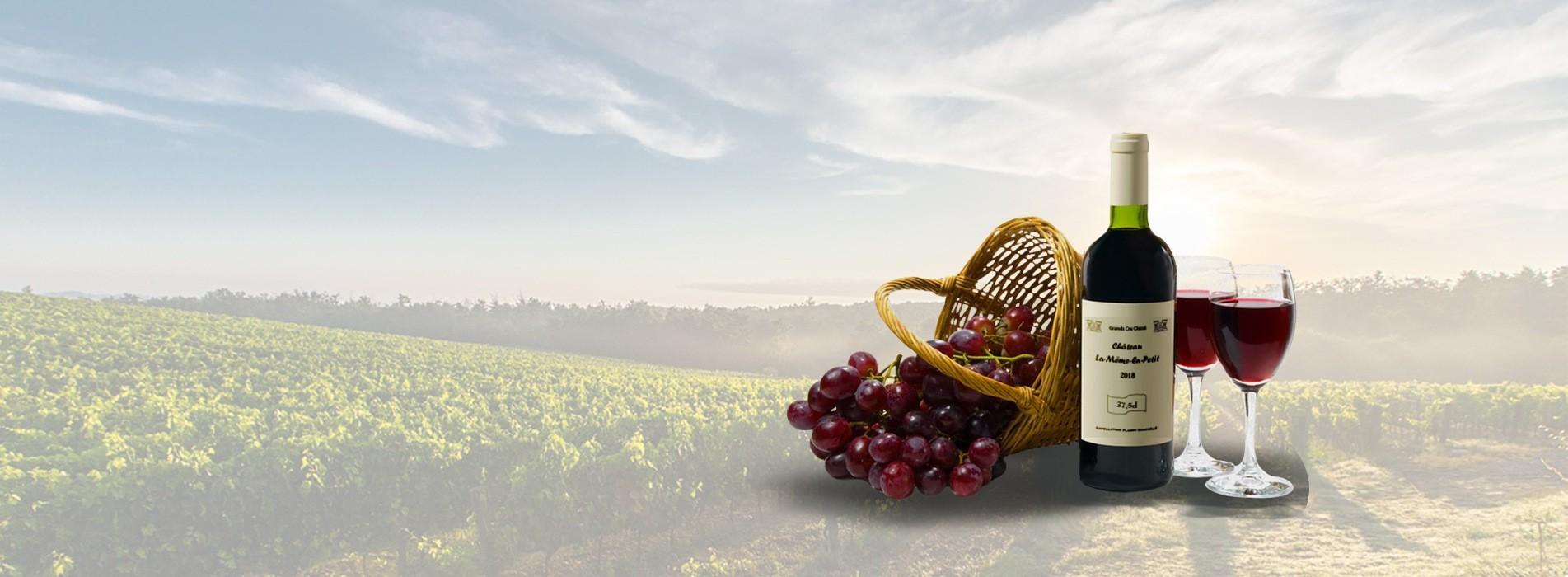 Vinademi, grands vins en demi-bouteille